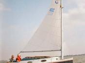 Seezunge A 2409-4